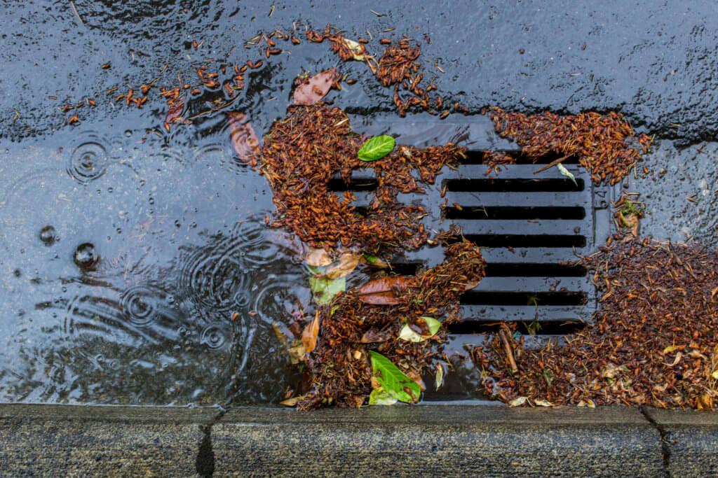 Storm Sewer Maintenance